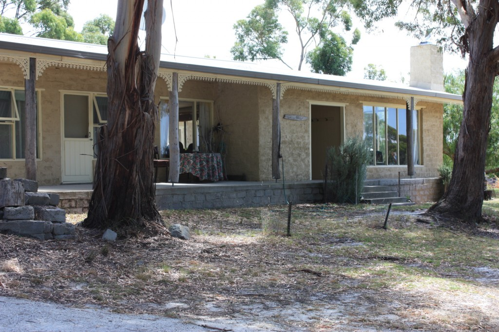 Large eucalypts shad the house in summer