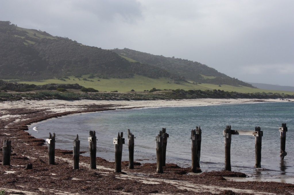 The remains of a jetty first built in the 1830's
